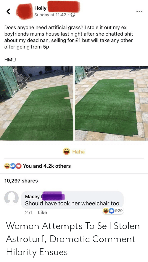 comment: Woman Attempts To Sell Stolen Astroturf, Dramatic Comment Hilarity Ensues
