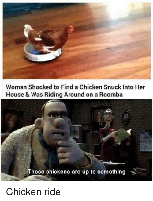 roombas: Woman Shocked to Find a Chicken Snuck Into Her  House & Was Riding Around on a Roomba  Those chickens are up to something Chicken ride
