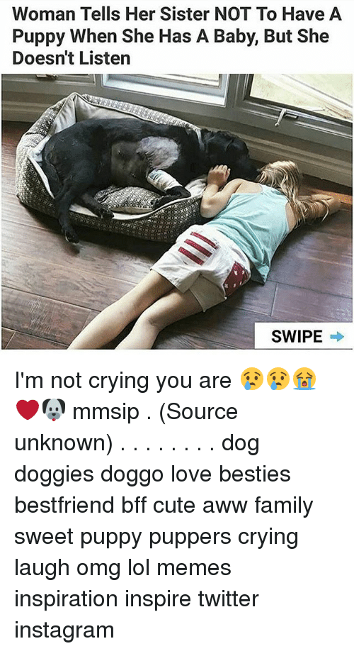 lol memes: Woman Tells Her Sister NOT To Have A  Puppy When She Has A Baby, But She  Doesn't Listen  SWIPE → I'm not crying you are 😢😢😭❤🐶 mmsip . (Source unknown) . . . . . . . . dog doggies doggo love besties bestfriend bff cute aww family sweet puppy puppers crying laugh omg lol memes inspiration inspire twitter instagram