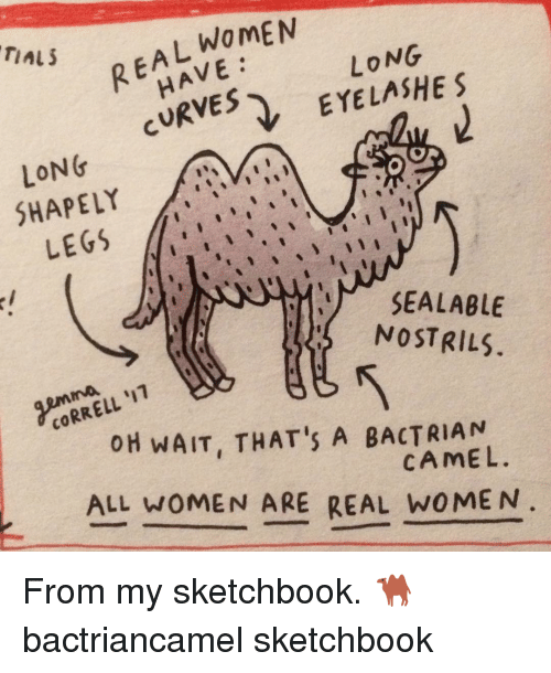 Memes, 🤖, and Correlation: WOMEN  REA HAVE:  LONG  TAL 5  CURVES  EYELASHE S  LONG  SHAPELY  LEGS  SEALABLE  NOSTRILs  CORRELL 'IT  OH WAIT, THAT's A BACTRIA N  CAMEL.  ALL woMEN ARE REAL W0MEN From my sketchbook. 🐫 bactriancamel sketchbook