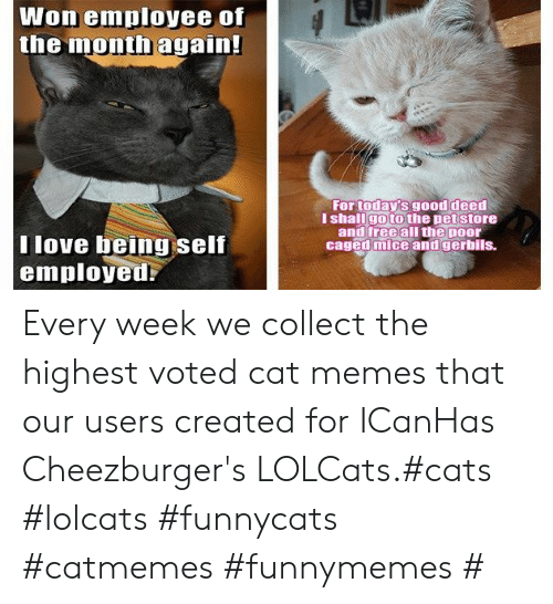 Caged: Won employee of  the month again!  For today's good deed  I shallgo to the pet store  and free all the poor  caged mice and gerbils.  T love being self  employed Every week we collect the highest voted cat memes that our users created for ICanHas Cheezburger's LOLCats.#cats #lolcats #funnycats #catmemes #funnymemes #