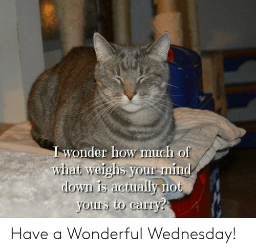 Have A Wonderful Wednesday: wonder how much of  what weighs your rmind  lo  yours to carry? Have a Wonderful Wednesday!