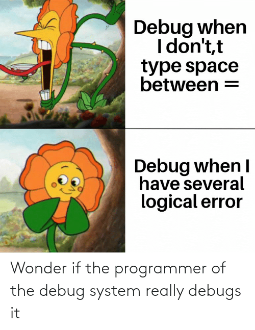 Programmer Humor: Wonder if the programmer of the debug system really debugs it