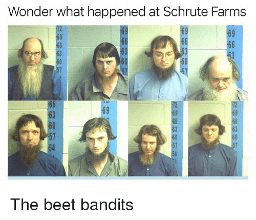 beet: Wonder what happened at Schrute Farms  69  63  63  69  63  57  54 The beet bandits