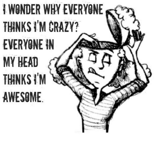 think-im-crazy: WONDER WHY EVERYONE  THINKS IM CRAZY?  EVERYONE IN  MY HEAD  THANKS 'M  AWESOME
