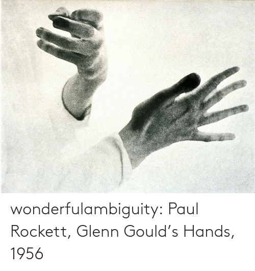hands: wonderfulambiguity:  Paul Rockett, Glenn Gould's Hands, 1956