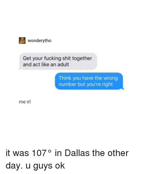 Fucking, Shit, and Dallas: wonderytho  Get your fucking shit together  and act like an adult  Think you have the wrong  number but you're right  me irl it was 107° in Dallas the other day. u guys ok