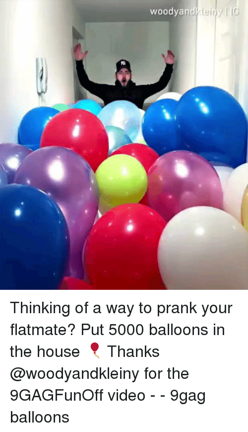 9gag, Memes, and Prank: woodyan Thinking of a way to prank your flatmate? Put 5000 balloons in the house 🎈 Thanks @woodyandkleiny for the 9GAGFunOff video - - 9gag balloons