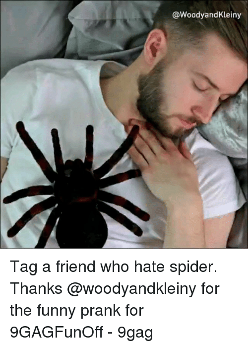 9gag, Funny, and Memes: @WoodyandKleiny Tag a friend who hate spider. Thanks @woodyandkleiny for the funny prank for 9GAGFunOff - 9gag