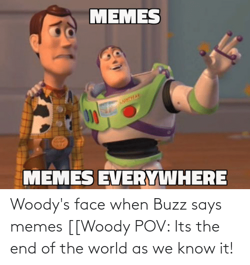 Its The End Of The World: Woody's face when Buzz says memes [[Woody POV: Its the end of the world as we know it!