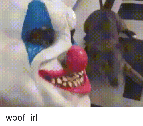 Irl, Dog IRL, and Woof: woof_irl