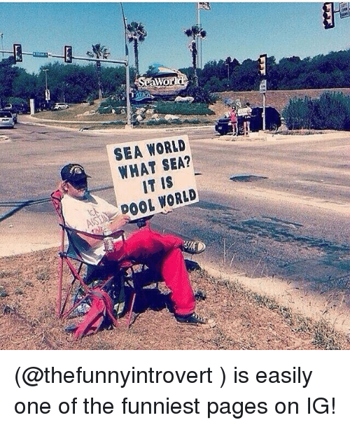 Funny, Meme, and Sea World: Wor  SEA WORLD  WHAT SEA?  IT IS (@thefunnyintrovert ) is easily one of the funniest pages on IG!