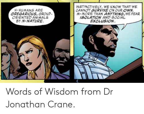 Words Of Wisdom: Words of Wisdom from Dr Jonathan Crane.