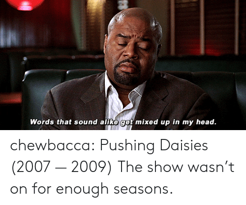 alike: Words that sound alike get mixed up in my head. chewbacca:  Pushing Daisies (2007 — 2009)  The show wasn't on for enough seasons.