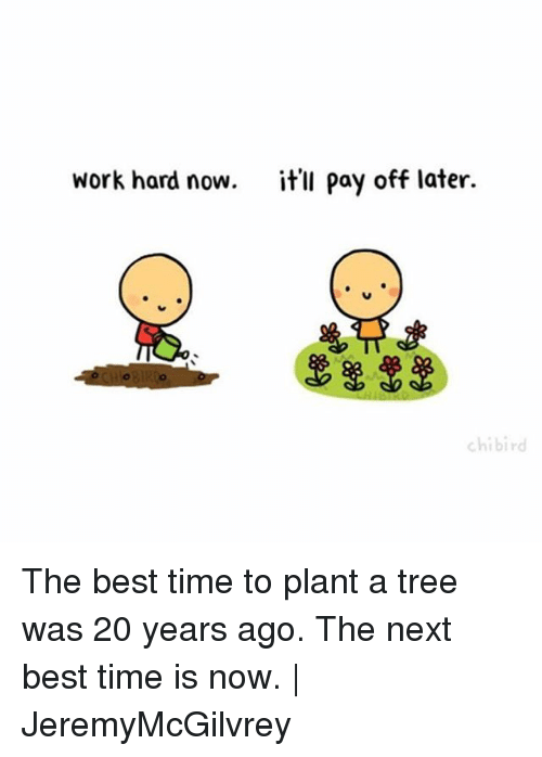 Memes, Work, and Best: work hard now. itll pay off later.  chibird The best time to plant a tree was 20 years ago. The next best time is now. | JeremyMcGilvrey