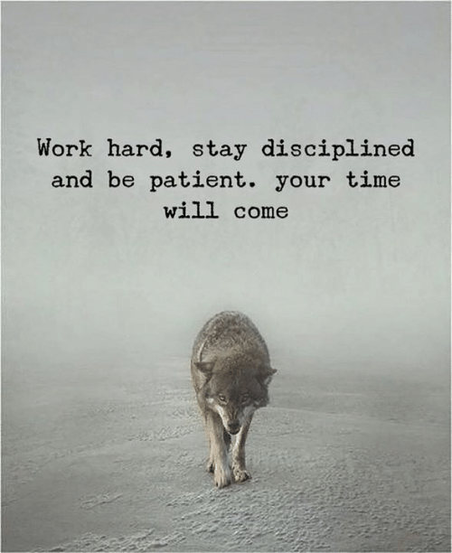 work hard: Work hard, stay disciplined  and be patient. your time  will come