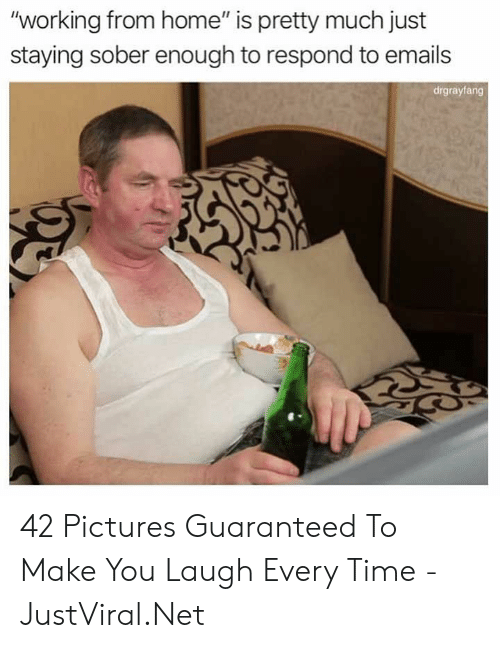 """Emails: """"working from home"""" is pretty much just  staying sober enough to respond to emails  drgrayfang 42 Pictures Guaranteed To Make You Laugh Every Time - JustViral.Net"""
