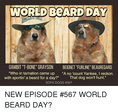"Beard, Dogs, and Memes: WORLDBPARD DAY  GAMBIT ""T-BONE"" GRAYSON  ""Who in tarnation came up  with sportin' a beard for a day?""  BEIGNET ""FURLINE"" BEAUREGARD  ""A no 'count Yankee, I reckon.  That dog won't hunt.""  SOFA DOGS NEW EPISODE #567 WORLD BEARD DAY?"