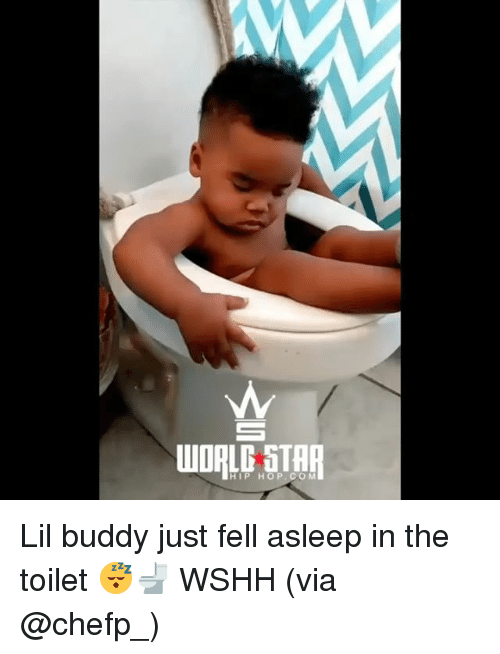 Memes, Wshh, and Star: WORLG STAR  HIP HOP.CO M Lil buddy just fell asleep in the toilet 😴🚽 WSHH (via @chefp_)