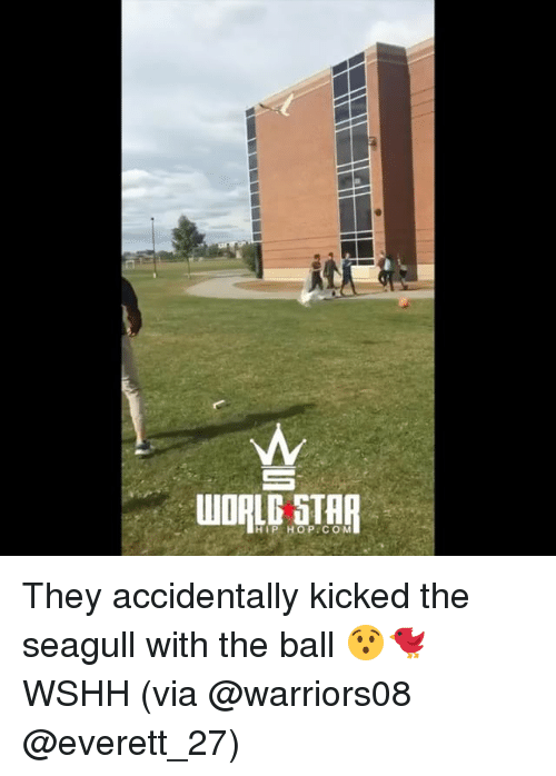 Memes, Wshh, and Star: WORLG STAR  HIP HOP COM They accidentally kicked the seagull with the ball 😯🐦 WSHH (via @warriors08 @everett_27)