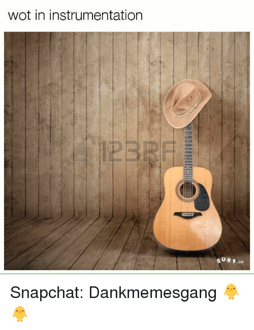 Snapchater: wot in instrumentation  SUR F.co Snapchat: Dankmemesgang 🐥🐥