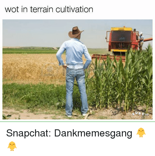Snapchater: wot in terrain cultivation Snapchat: Dankmemesgang 🐥🐥