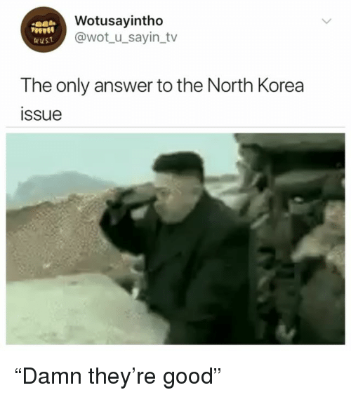 "North Korea, Good, and Girl Memes: Wotusayintho  @wot u_sayin tv  9000  The only answer to the North Korea  issue ""Damn they're good"""