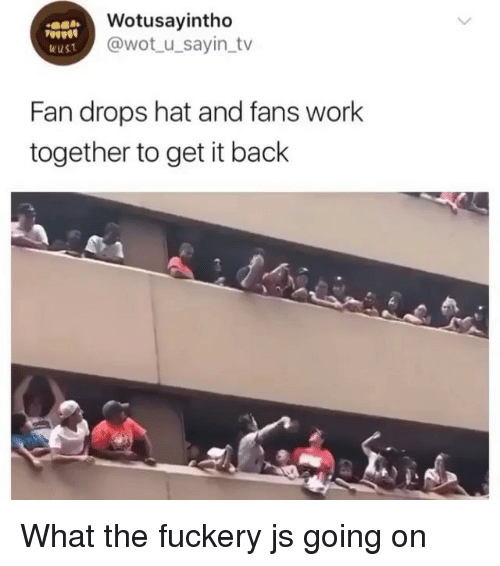 Memes, Work, and Back: Wotusayintho  @wot_u_sayin_tv  Fan drops hat and fans work  together to get it back What the fuckery js going on