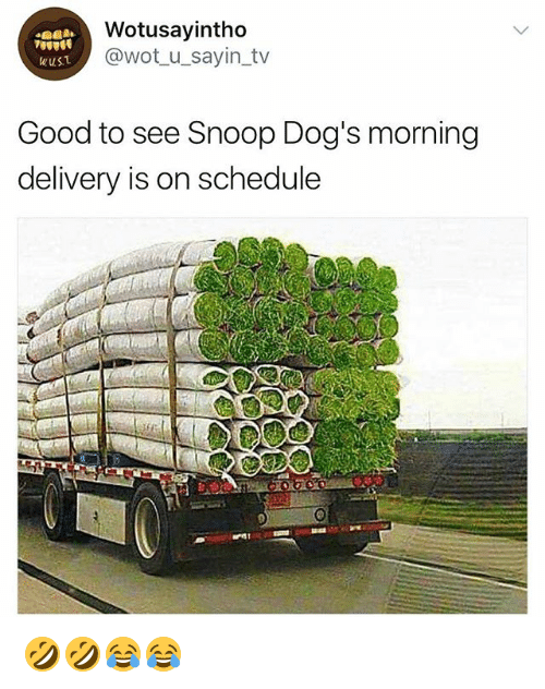 snoopes: Wotusayintho  @wot_u_sayin_tv  Good to see Snoop Dog's morning  delivery is on schedule 🤣🤣😂😂