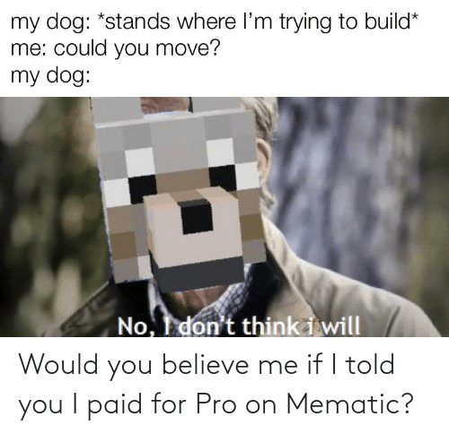Told You: Would you believe me if I told you I paid for Pro on Mematic?