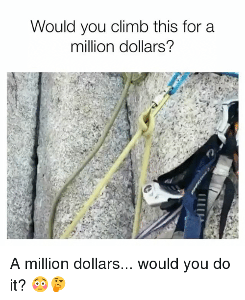 Memes, 🤖, and You: Would you climb this for a  million dollars? A million dollars... would you do it? 😳🤔
