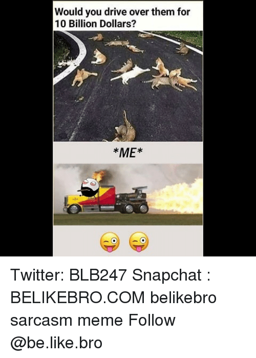 Be Like, Meme, and Memes: Would you drive over them for  10 Billion Dollars?  ME* Twitter: BLB247 Snapchat : BELIKEBRO.COM belikebro sarcasm meme Follow @be.like.bro