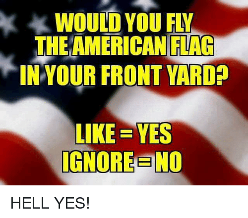 Memes, American, and American Flag: WOULD YOU FLY  THE AMERICAN FLAG  IN YOUR FRONT YARD?  LIKE YES  IGNOREENO HELL YES!