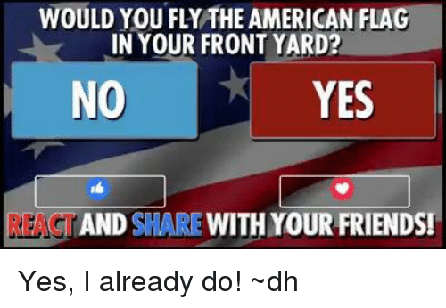 Memes, 🤖, and Yard: WOULD YOU FLYTHE AMERICAN FLA  IN YOUR FRONT YARD?  NO  YES  AND  SHARE  WITH YOUR FRIENDS Yes, I already do!     ~dh