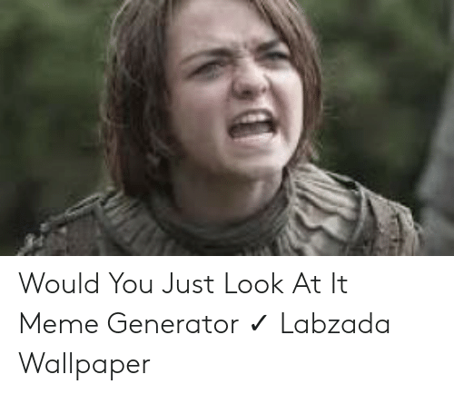 Would You Just Look At It: Would You Just Look At It Meme Generator ✓ Labzada Wallpaper