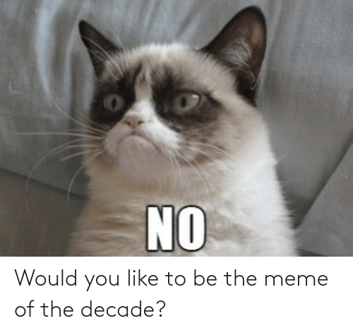 The Meme: Would you like to be the meme of the decade?