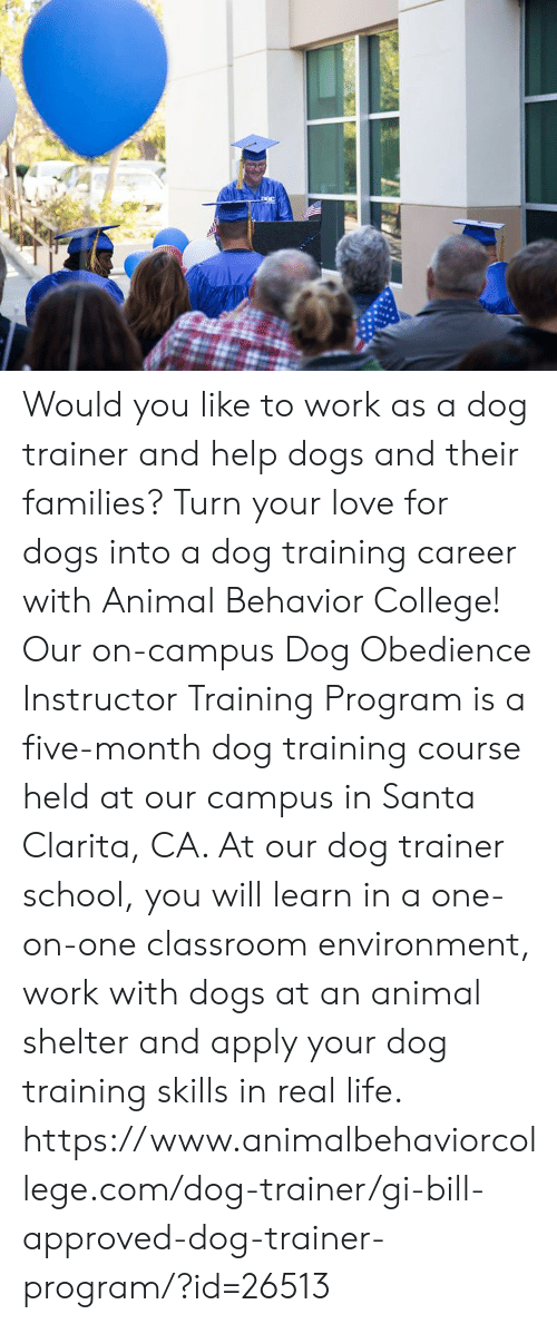 gi bill: Would you like to work as a dog trainer and help dogs and their families? Turn your love for dogs into a dog training career with Animal Behavior College!  Our on-campus Dog Obedience Instructor Training Program is a five-month dog training course held at our campus in Santa Clarita, CA. At our dog trainer school, you will learn in a one-on-one classroom environment, work with dogs at an animal shelter and apply your dog training skills in real life.  https://www.animalbehaviorcollege.com/dog-trainer/gi-bill-approved-dog-trainer-program/?id=26513