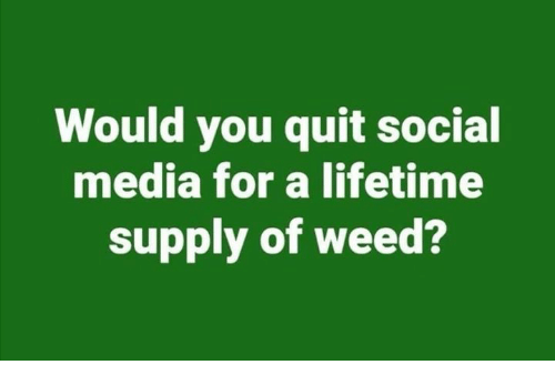 Memes, Social Media, and Weed: Would you quit social  media for a lifetime  supply of weed?