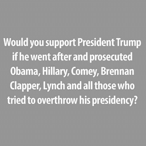 hillary: Would you support President Trump  if he went after and prosecuted  Obama, Hillary, Comey, Brennan  Clapper, Lynch and all those who  tried to overthrow his presidency?
