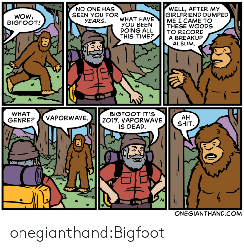 breakup: WOW  BIGFOOT!  NO ONE HAS  SEEN YOU FOR  WELL, AFTER MY  GIRLFRIEND DUMPED  ME I CAME TO  YEARS, WHAT HAVE  OU BETHESE WOODS  DOING ALL TO RECORD  THIS TIME?A BREAKUP  ALBUM  WHAT  GENRE?/VAPORWAV  BIGFOOT IT'S  E.2019. vAPORWAVESHIT  AH  IS DEAD  ONEGIANTHAND.COM onegianthand:Bigfoot