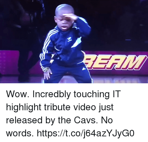 Blackpeopletwitter, Cavs, and Wow: Wow. Incredbly touching IT highlight tribute video just released by the Cavs. No words. https://t.co/j64azYJyG0