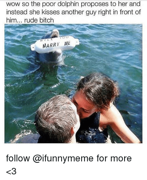 Dolphin: wow so the poor dolphin proposes to her and  instead she kisses another guy right in front of  him  rude bitch  MARRY ME follow @ifunnymeme for more <3