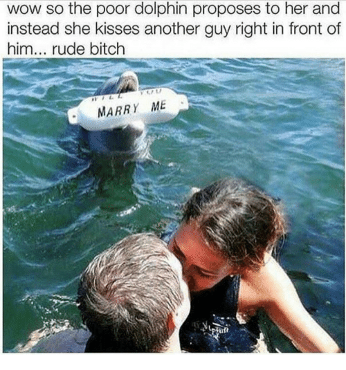 Dolphin: wow so the poor dolphin proposes to her and  instead she kisses another guy right in front of  him... rude bitch  MARRY ME