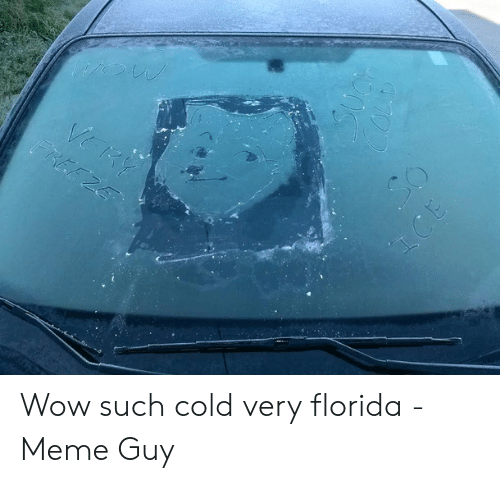 Florida Meme: Wow such cold very florida - Meme Guy