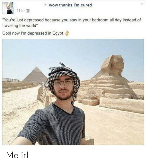 "lim: wow thanks i'm cured  11 h  You're just depressed because you stay in your bedroom all day instead of  traveling the world""  Cool now lI'm depressed in Egypt d Me irl"