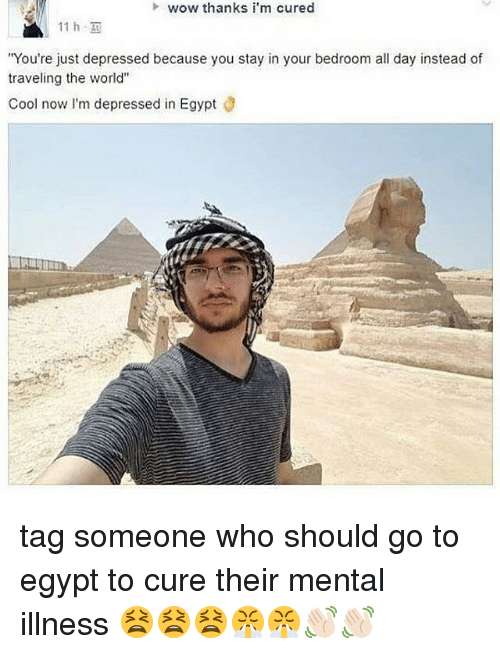 """Memes, Wow, and Cool: wow thanks i'm cured  You're just depressed because you stay in your bedroom all day instead of  traveling the world""""  Cool now I'm depressed in Egypt tag someone who should go to egypt to cure their mental illness 😫😫😫😤😤👋🏻👋🏻"""