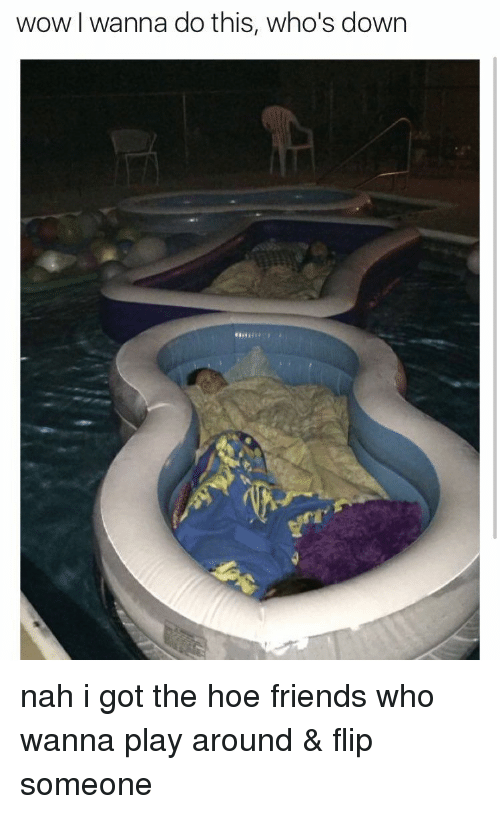 Hoe, Hoes, and Girl Memes: wow wanna do this, who's down nah i got the hoe friends who wanna play around & flip someone