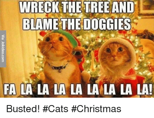 Memes, 🤖, and Blame: WRECK THE TREE AND  BLAME THE DOGGIES  FA LA LA LA LA LA LA LA LA! Busted! #Cats #Christmas