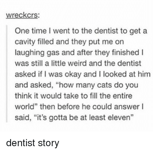 """🤖: wreckcrs:  One time went to the dentist to get a  cavity filled and they put me on  laughing gas and after they finished I  was still a little weird and the dentist  asked if I was okay and I looked at him  and asked, """"how many cats do you  think it would take to fill the entire  world"""" then before he could answer I  said, """"it's gotta be at least eleven"""" dentist story"""
