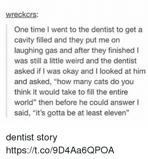 """cavity: wreckcrs:  One time went to the dentist to get a  cavity filled and they put me on  laughing gas and after they finished I  was still a little weird and the dentist  asked if I was okay and I looked at him  and asked, """"how many cats do you  think it would take to fill the entire  world"""" then before he could answer I  said, """"it's gotta be at least eleven"""" dentist story https://t.co/9D4Aa6QPOA"""